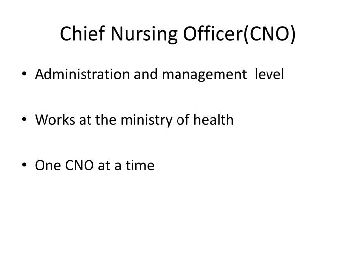 Chief Nursing Officer(CNO)