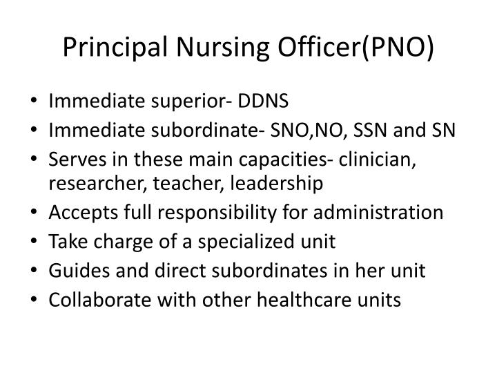 Principal Nursing Officer(PNO)