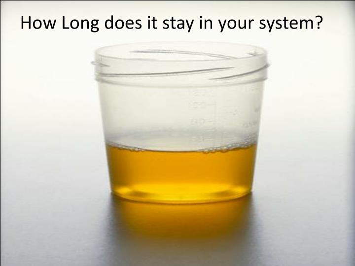 How Long does it stay in your system?