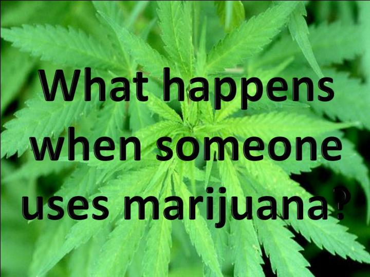 What happens when someone uses marijuana?