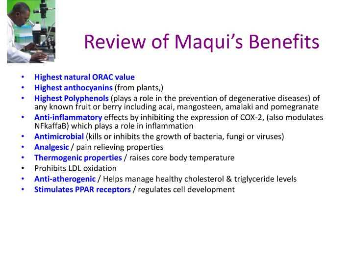 Review of Maqui's Benefits