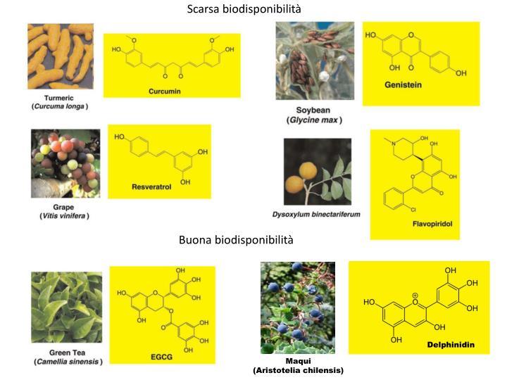 Scarsa biodisponibilità