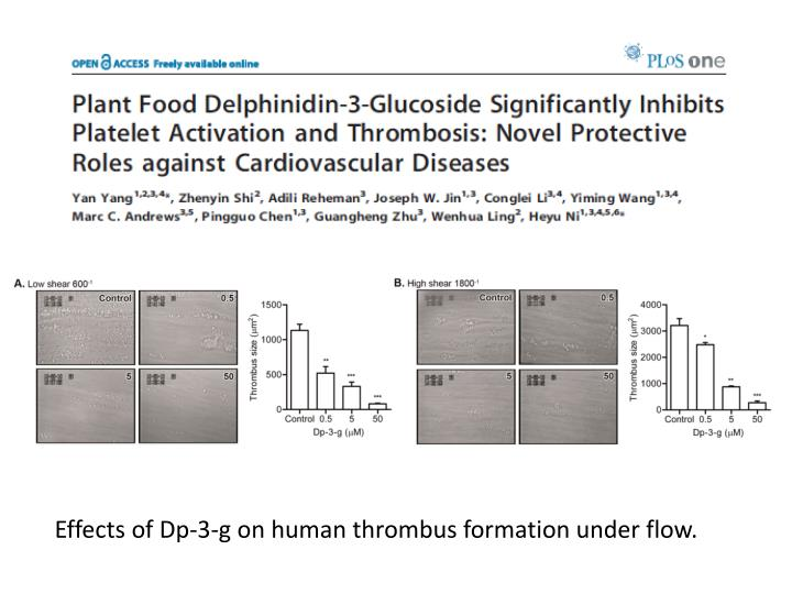 Effects of Dp-3-g on human thrombus formation under flow.