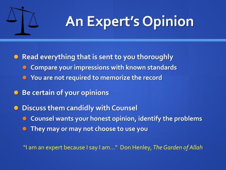 An Expert's Opinion