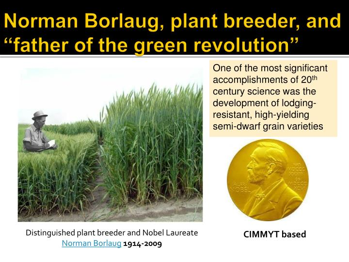 "Norman Borlaug, plant breeder, and ""father of the green revolution"""