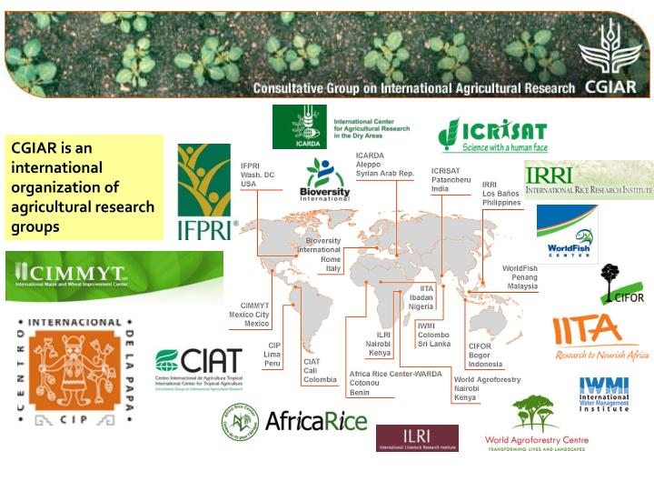 CGIAR is an international organization of agricultural research groups