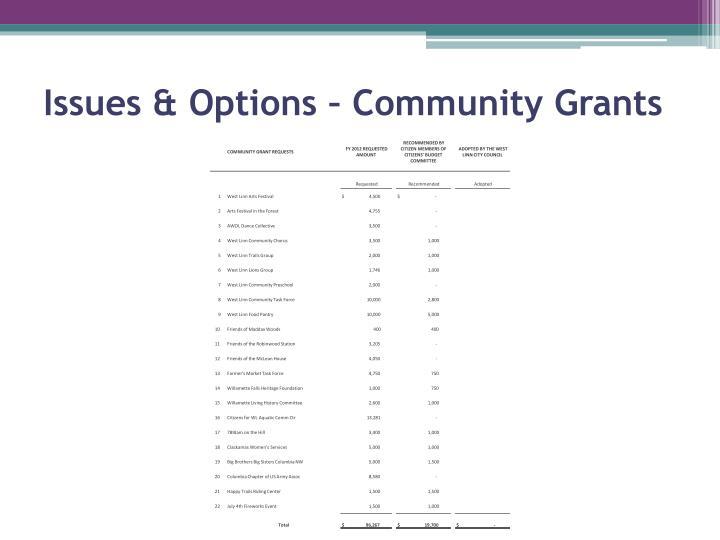 Issues & Options – Community Grants