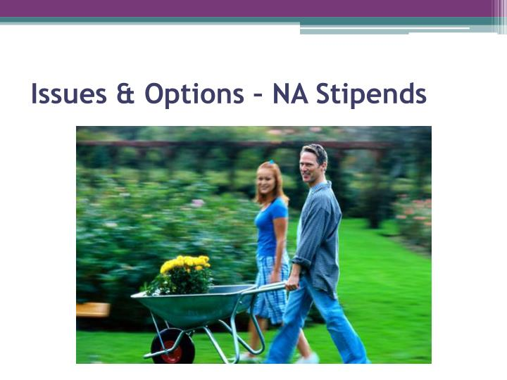 Issues & Options – NA Stipends