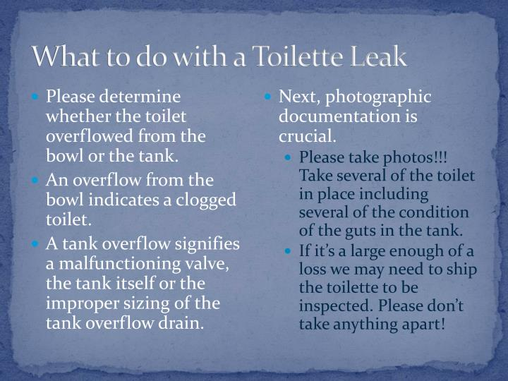 What to do with a Toilette Leak
