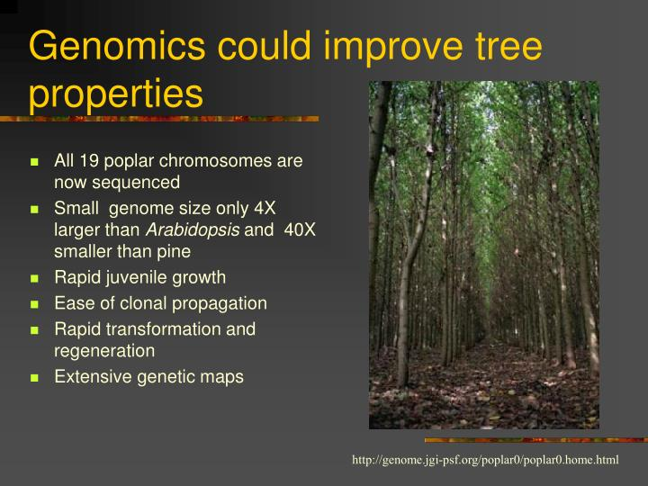 Genomics could improve tree properties