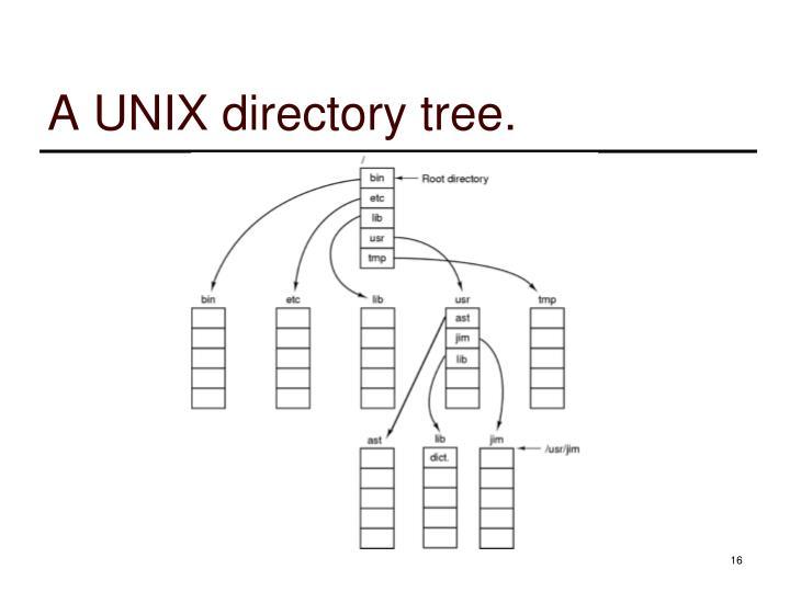 A UNIX directory tree.