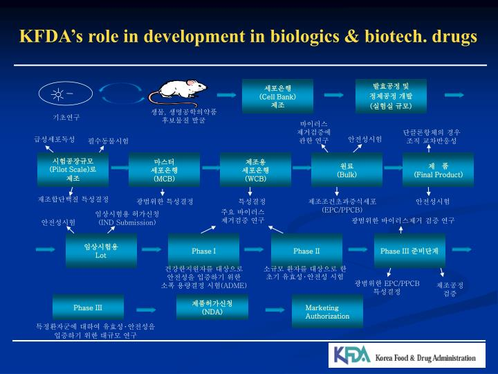 KFDA's role in development in biologics & biotech. drugs