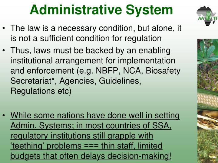 Administrative System