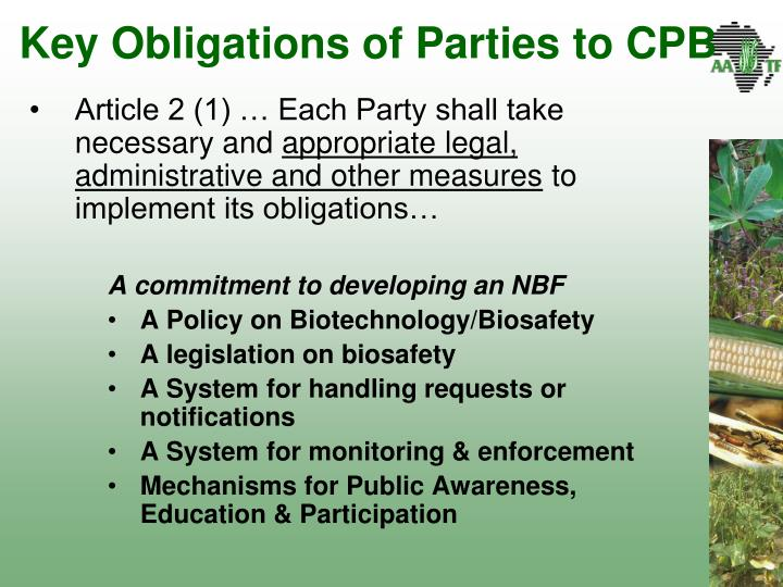 Key Obligations of Parties to CPB