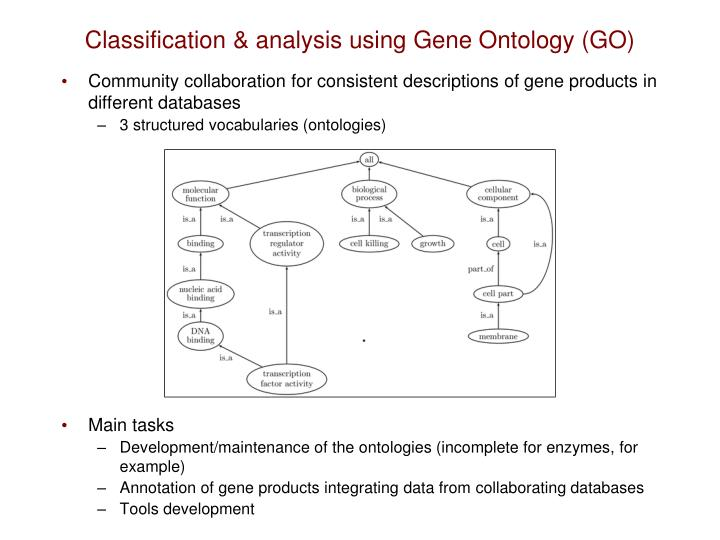 Classification & analysis using Gene Ontology (GO)