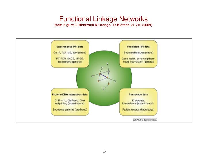 Functional Linkage Networks