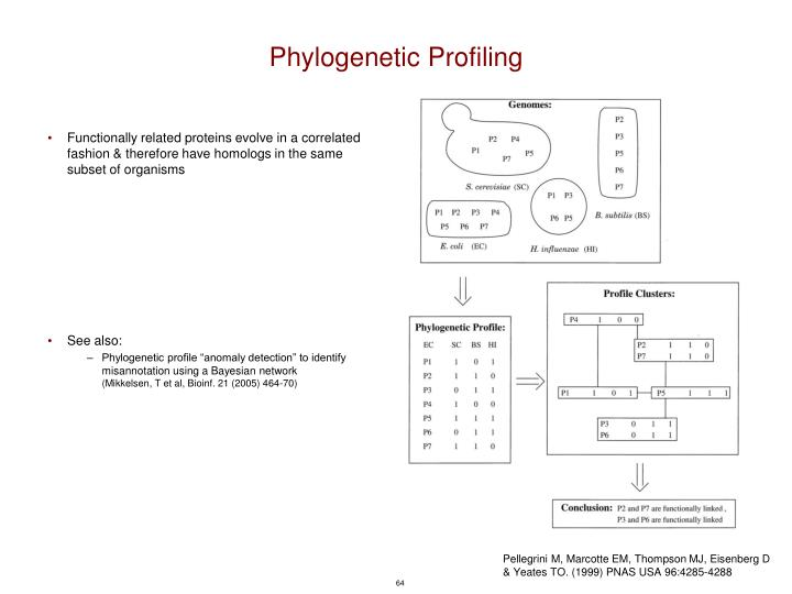 Phylogenetic Profiling