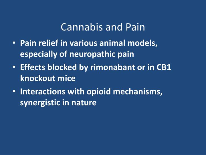 Cannabis and Pain