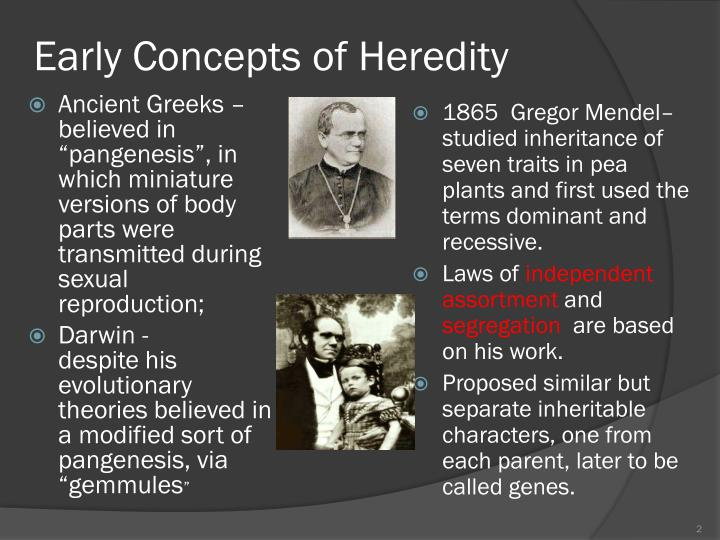 Early Concepts of Heredity