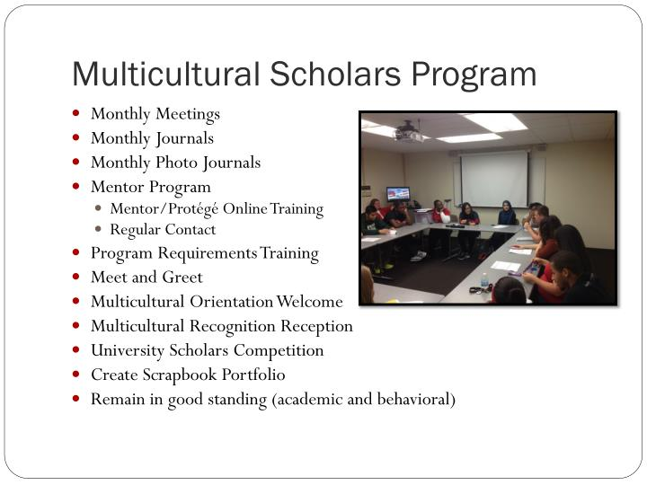 Multicultural Scholars Program