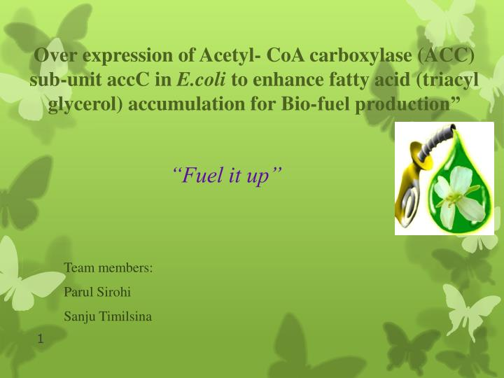Fuel it up team members parul sirohi sanju timilsina
