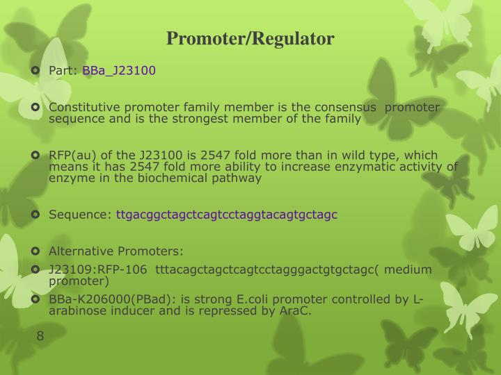 Promoter/Regulator