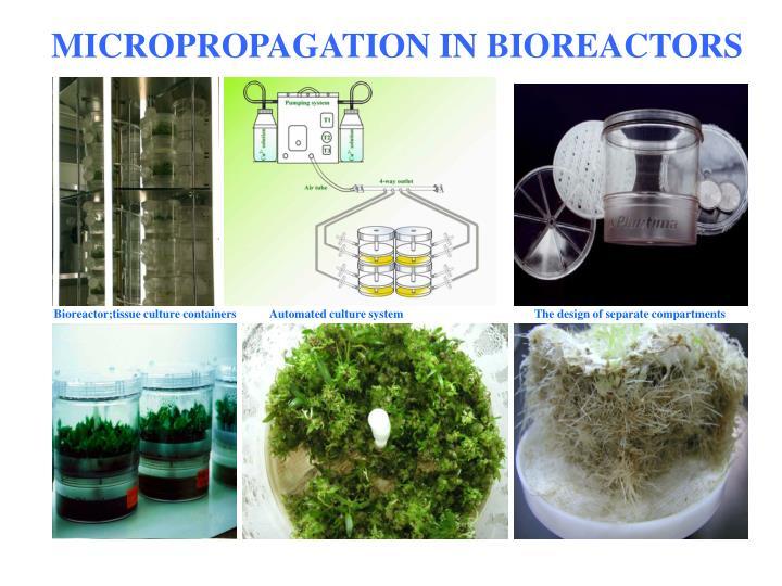 Bioreactor;tissue culture containers