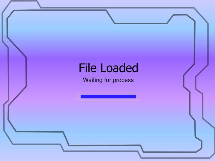 File Loaded