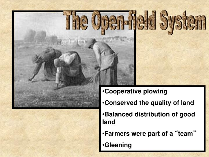 The Open-field System