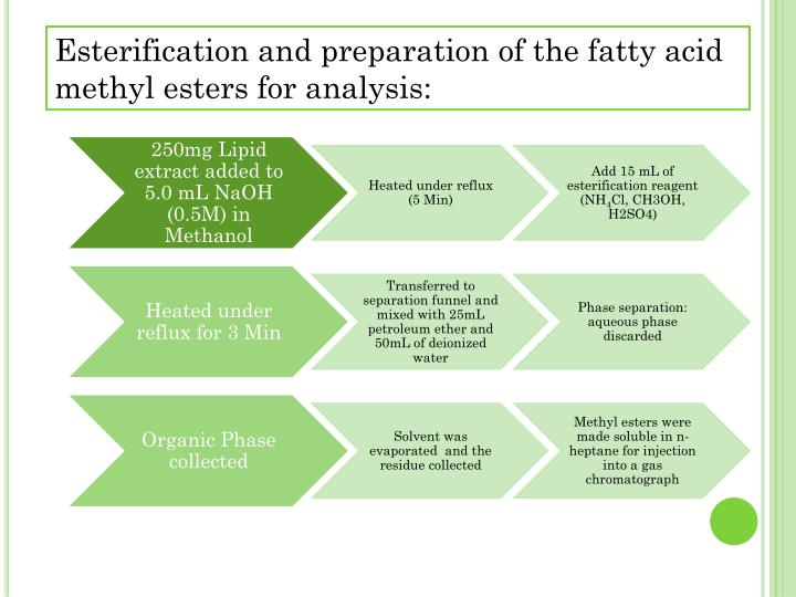 Esterification and preparation of the fatty acid methyl esters for analysis: