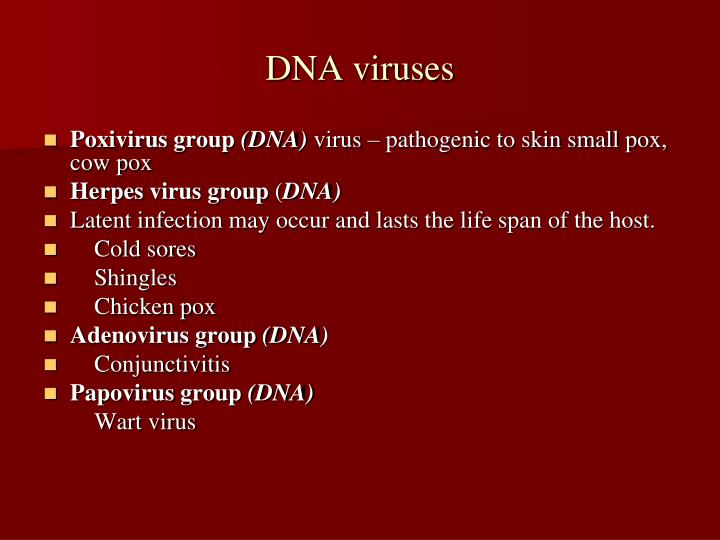 DNA viruses