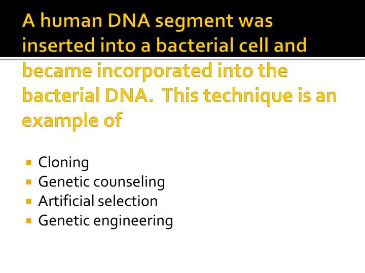 A human DNA segment was inserted into a bacterial cell and became incorporated into the bacterial DNA.  This technique is an example of