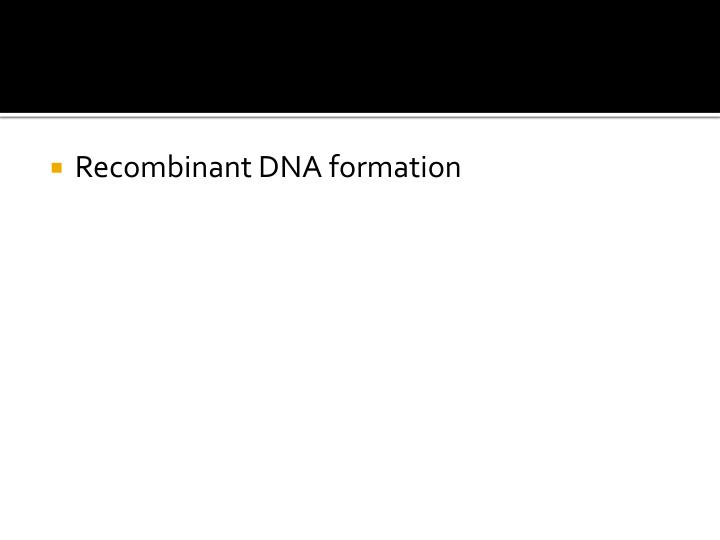 Recombinant DNA formation