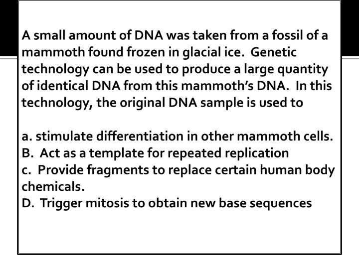A small amount of DNA was taken from a fossil of a mammoth found frozen in glacial ice.  Genetic technology can be used to produce a large quantity of identical DNA from this mammoth's DNA.  In this technology, the original DNA sample is used to