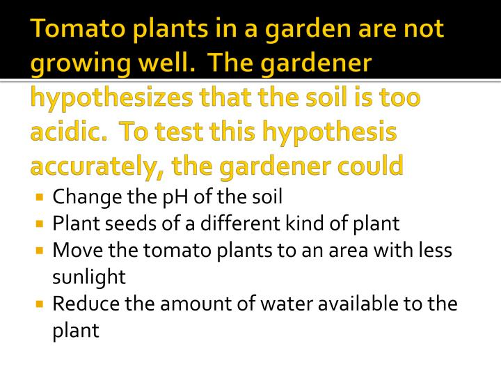 Tomato plants in a garden are not growing well.  The gardener hypothesizes that the soil is too acidic.  To test this hypothesis accurately, the gardener could