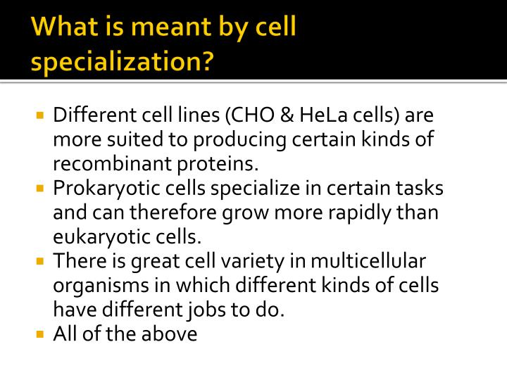 What is meant by cell specialization?