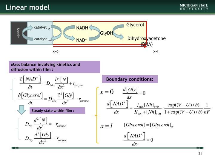 Linear model