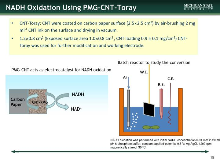 NADH Oxidation Using PMG-CNT-Toray