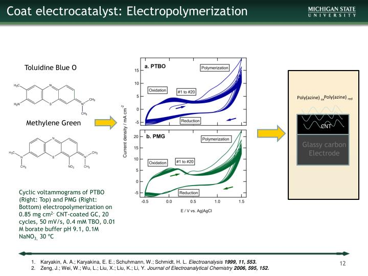 Coat electrocatalyst: Electropolymerization
