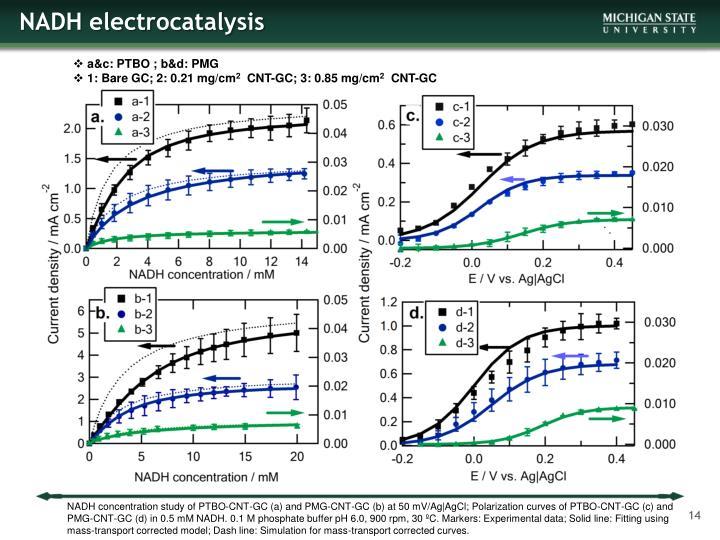 NADH electrocatalysis