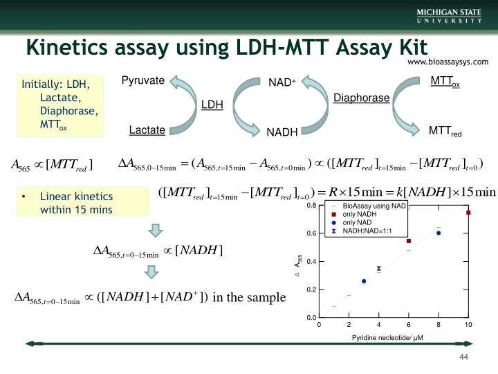 Kinetics assay using LDH-MTT Assay Kit