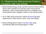 14 1 biopharming making human proteins in bacteria cells and animals