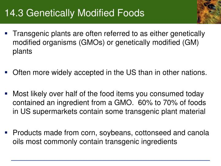 14.3 Genetically Modified Foods