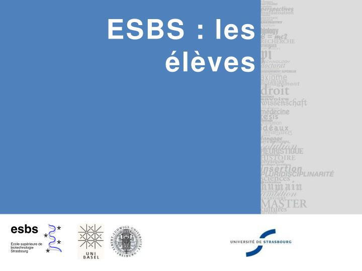 ESBS : les élèves