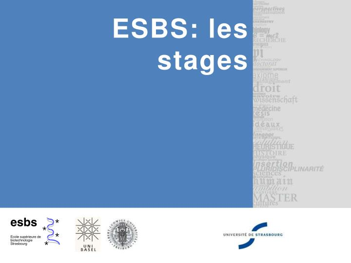 ESBS: les stages