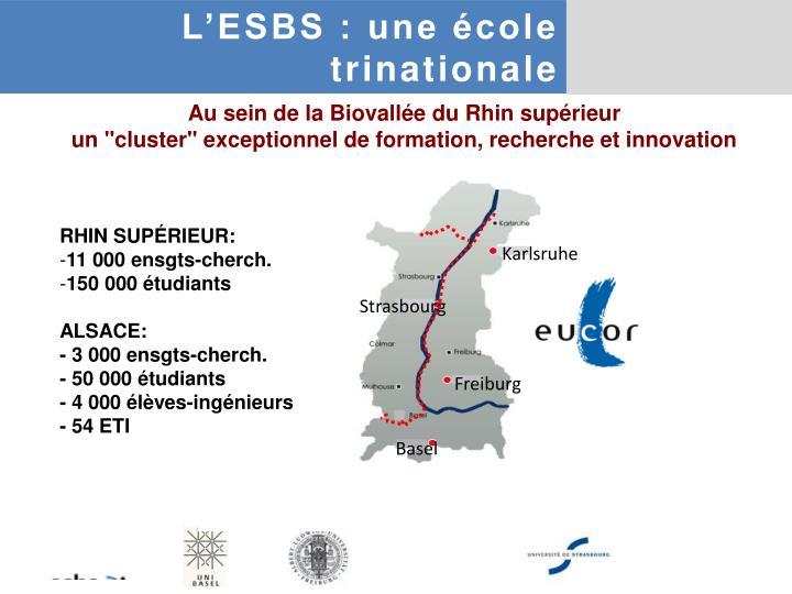 L'ESBS : une école
