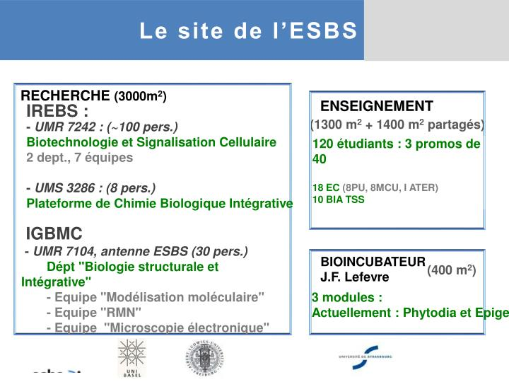 Le site de l'ESBS