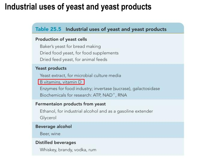 Industrial uses of yeast and yeast products