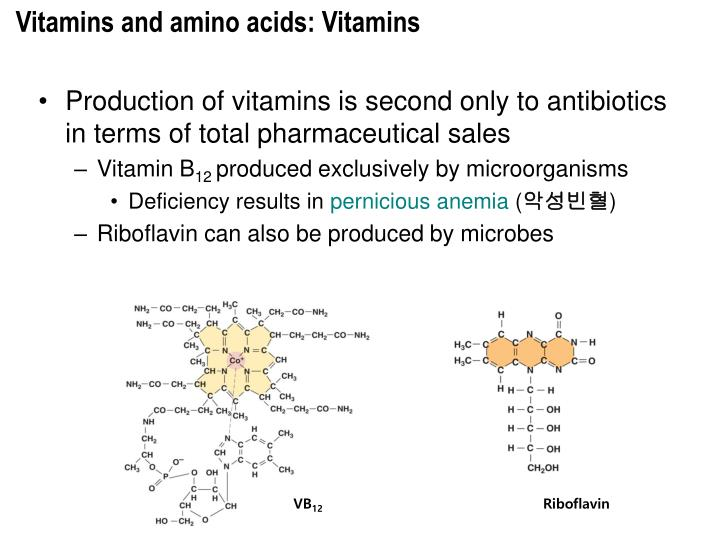 Vitamins and amino acids: Vitamins