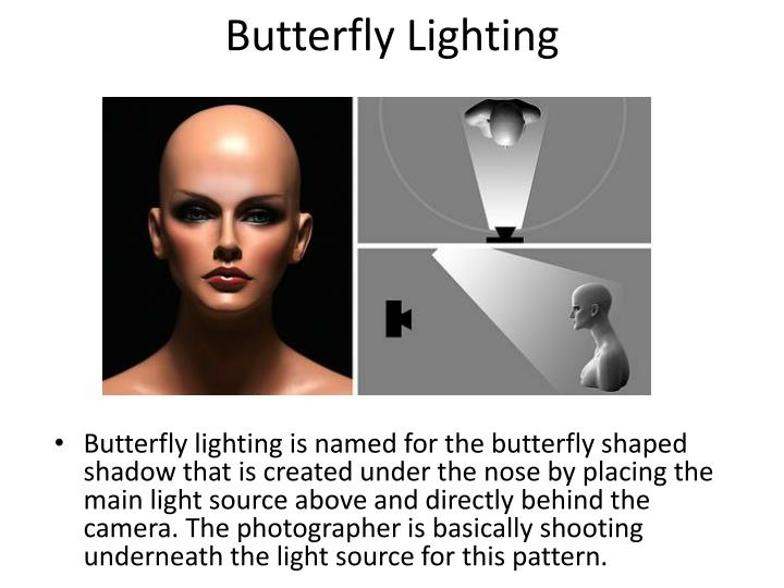 Butterfly Lighting